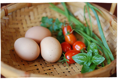 Eggs, tomatoes, herbs from the garden