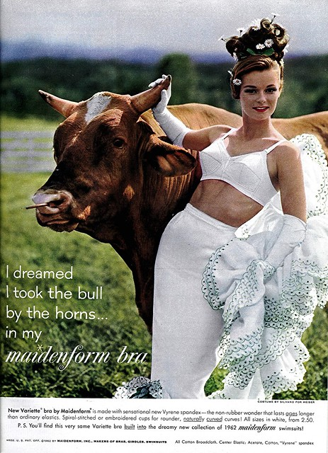 I Dreamed I Took The Bull By The Horns In My Maidenform Bra