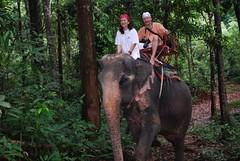On elephant tour