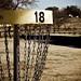 33/365: Disc Golf