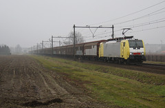 Helmond, 8 Februari 2010 TXL (Arnold de Vries.) Tags: train siemens zug geel trein txl mrce br189 dispolok es64f4 189995