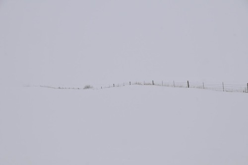 Cold Winter Fence
