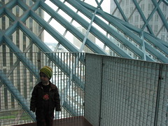 Seattle Public Library Downtown: Highest Viewpoint