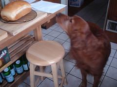 Samson bread