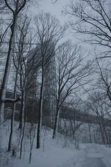GW bridge in a snowstorm (remy_lim) Tags: newyork georgewashingtonbridge