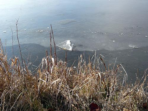 canal gel