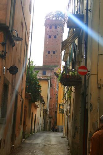 Torre Guinigi a Lucca Toscana