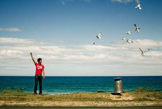 Blatt_Jones+Birds_NewZealand
