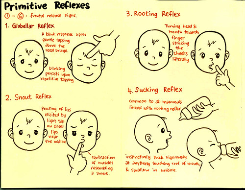 the primitive reflexes