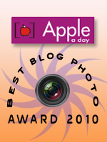 Best Blog Photo Competiong 2010