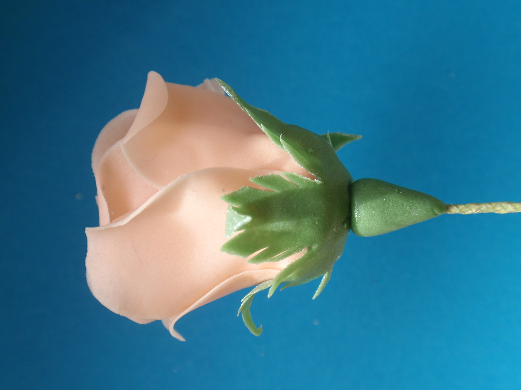 Making a full sugar flower rose
