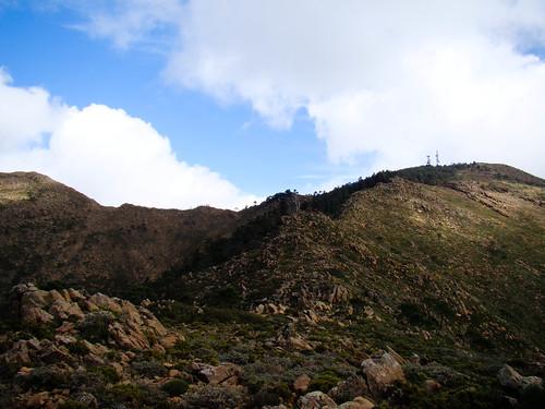 Ruta Sierra Bermeja (12)