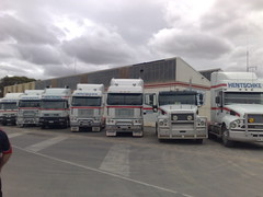 Hentschke Transport, Line Up (Jeronimo08) Tags: truck transport australia coe iveco argosy freightliner cabover eurotech powerstar hentschke