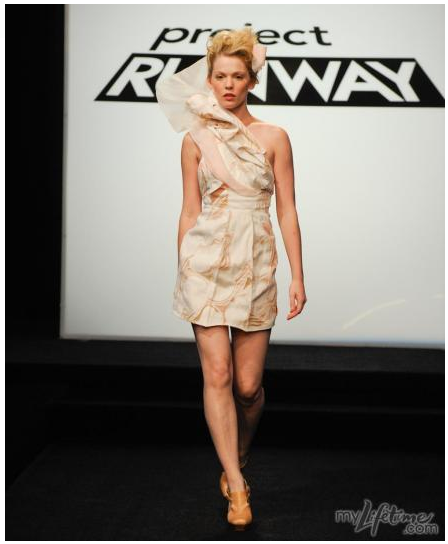 Project Runway: Elements of Fashion
