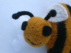 Closeup of Bee Sweet 3