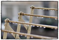 Hoy no se tiende (Uno de Melilla) Tags: españa lluvia spain agua sony gotas desenfoque invierno f18 trainspotting melilla 135mm lluvioso tendedero trainspottingml melillatrainspotting fotografíatrainspottinmelilla