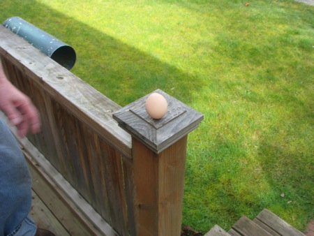 The egg stands alone!