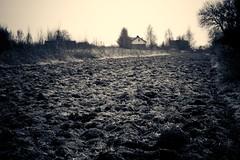 field (mike.zielony) Tags: field cracow tonie bronowice krakoff twtmeiconoftheday