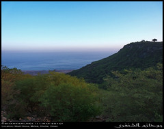 A Look over Wadi Hinna, Dhofar (Shanfari.net) Tags: summer nature lumix raw natural panasonic oman wadi fz mountian zufar rw2 salalah hinna  sultanate dhofar  khareef     mirbat          governate  dofar fz38 marbat  fz35 dmcfz35  qaith