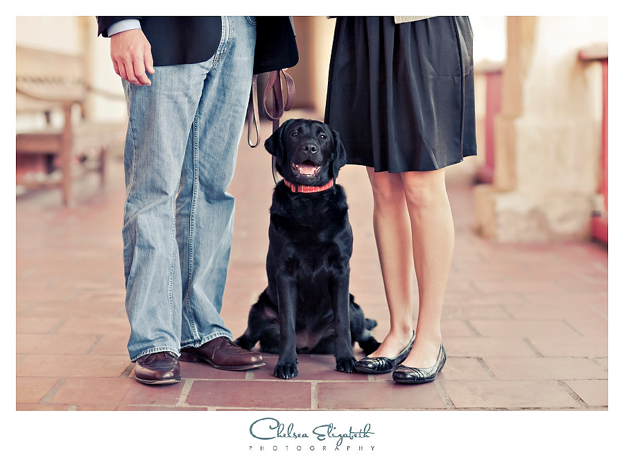 black labrador dog vintage engagement session with couples shoes