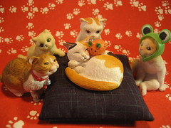 Kitties and Pal