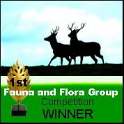 Fauna & Flora Group White text Competition 1st Place psd