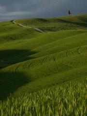 Poesia Toscana