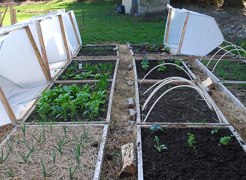 vented hoop houses 2