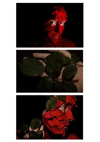 Petal triptych