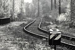 Railway (nemo585) Tags: industry nature natur railway industrie schienen top20railroad 1on1planestrainsautosphotooftheweek vanagram 1on1planestrainsautosphotooftheweekmay2010