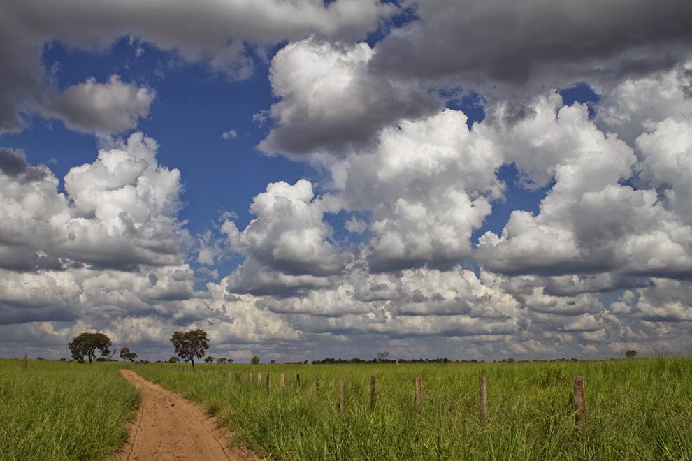 Camino de tierra rumbo a una estancia, cerca de las Dunas, en Río Verde. (Río Verde, San Pedro, Paraguay - Tetsu Espósito)