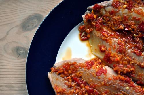 Makrel med chili, ingefær, gurkemeje og korianderrod