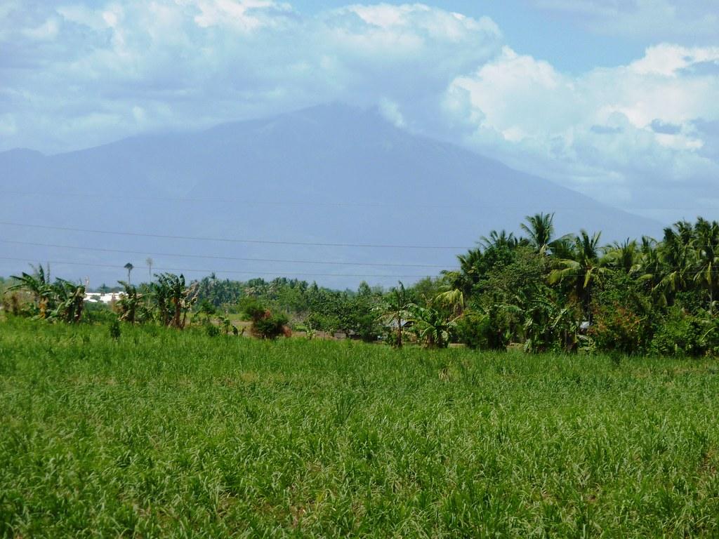 Negros-Dumaguete-Mabinay-Bacolod (169)