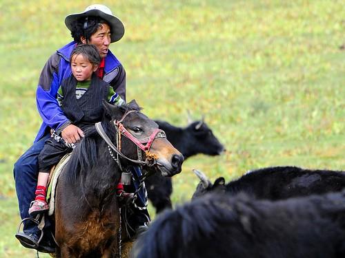 Nomads in Tibet, ??????? drokba by reurinkjan.