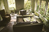 (yyellowbird) Tags: plants house green abandoned oregon chair branches livingroom couch