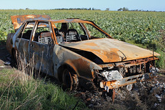 Tasmania: Junked Out Old Car