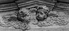 peaceswirl's cherubs (lam 09) Tags: bw rome roma angel wing ali angels ala cherub marble angelo cherubs scultura angeli marmo cherubini peaceswirl chiostrodisansalvatoreinlauro