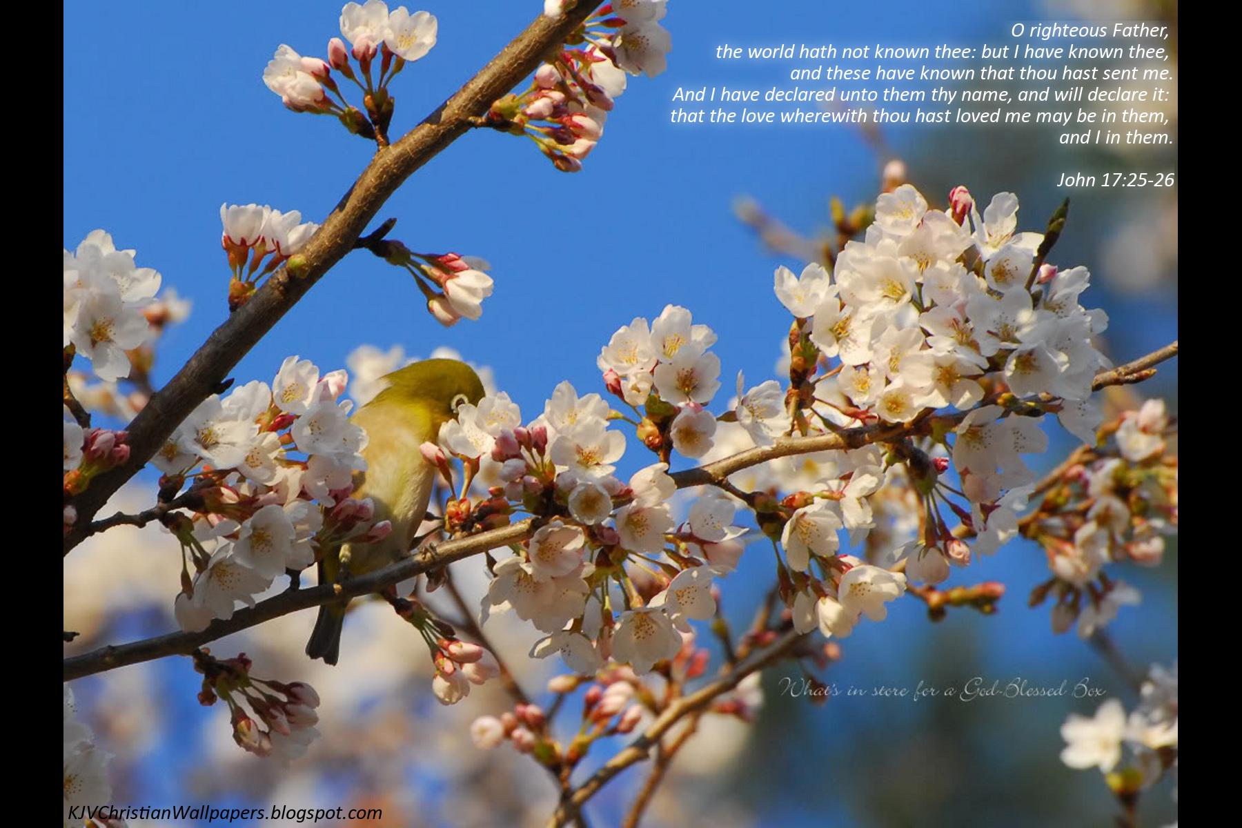 Spring10-37