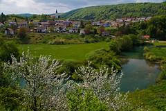 Spring view (Karmen Smolnikar) Tags: trees houses water river spring view slovenia slovenija krka bloomingtrees zuzemberk žužemberk yourwonderland