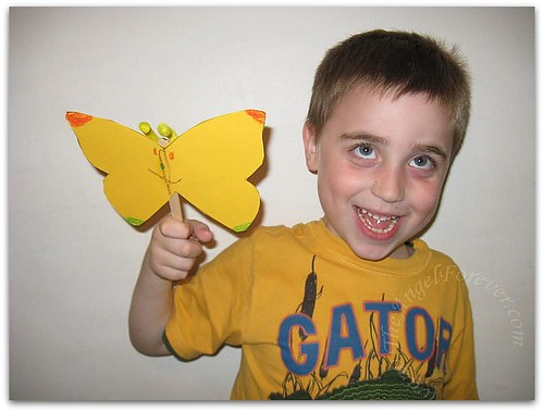 The Butterfly with yellow antennae