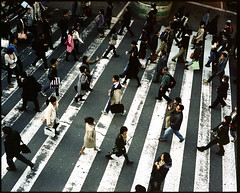 zebra crossing (troutfactory) Tags: street film japan mediumformat walking afternoon go crowd rangefinder   osaka greenlight analogue 6x7 crosswalk kansai umeda zebracrossing   kodak400vc fujifilmgf670 voigtlanderbessaiii