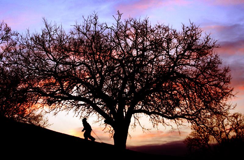 Sledding at sunset