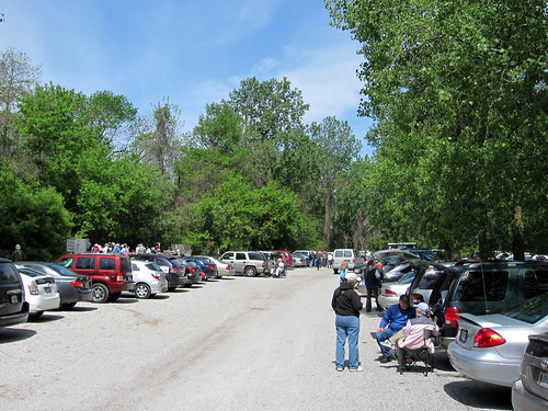 Parking Lot @ Magee Marsh