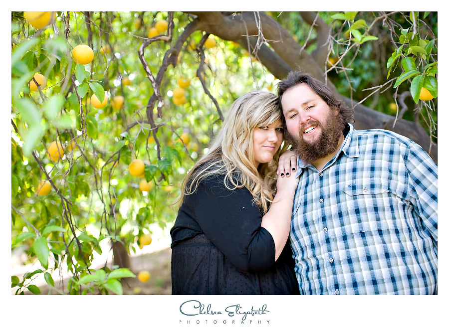 Orange orchard engagement photography