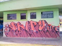 Skipy MFC coraZoncitos