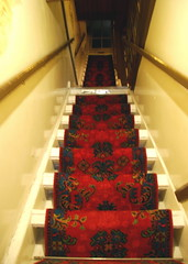 Going up? (that's keen) Tags: red holland netherlands dutch amsterdam stairs carpet steps stairway rug steep