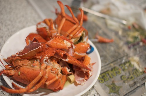 Lobster Carcass