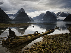 The Sound of Silence (Ian@NZFlickr) Tags: bravo flickrsbest naturepoetry infinestyle