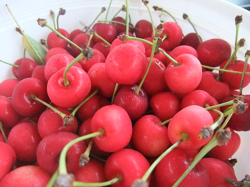 Sweet Cherries from Rhoads Farm Market