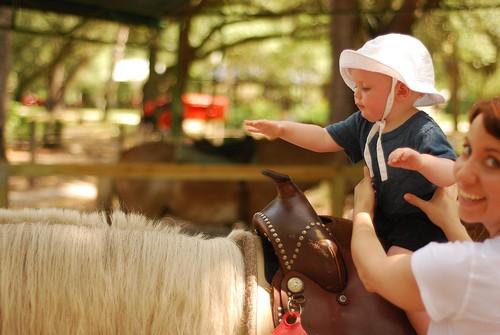riding a pony.JPG